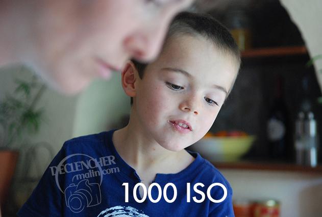 Portrait_1000_ISO