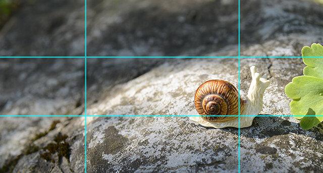 Cours photo et Principe des tiers