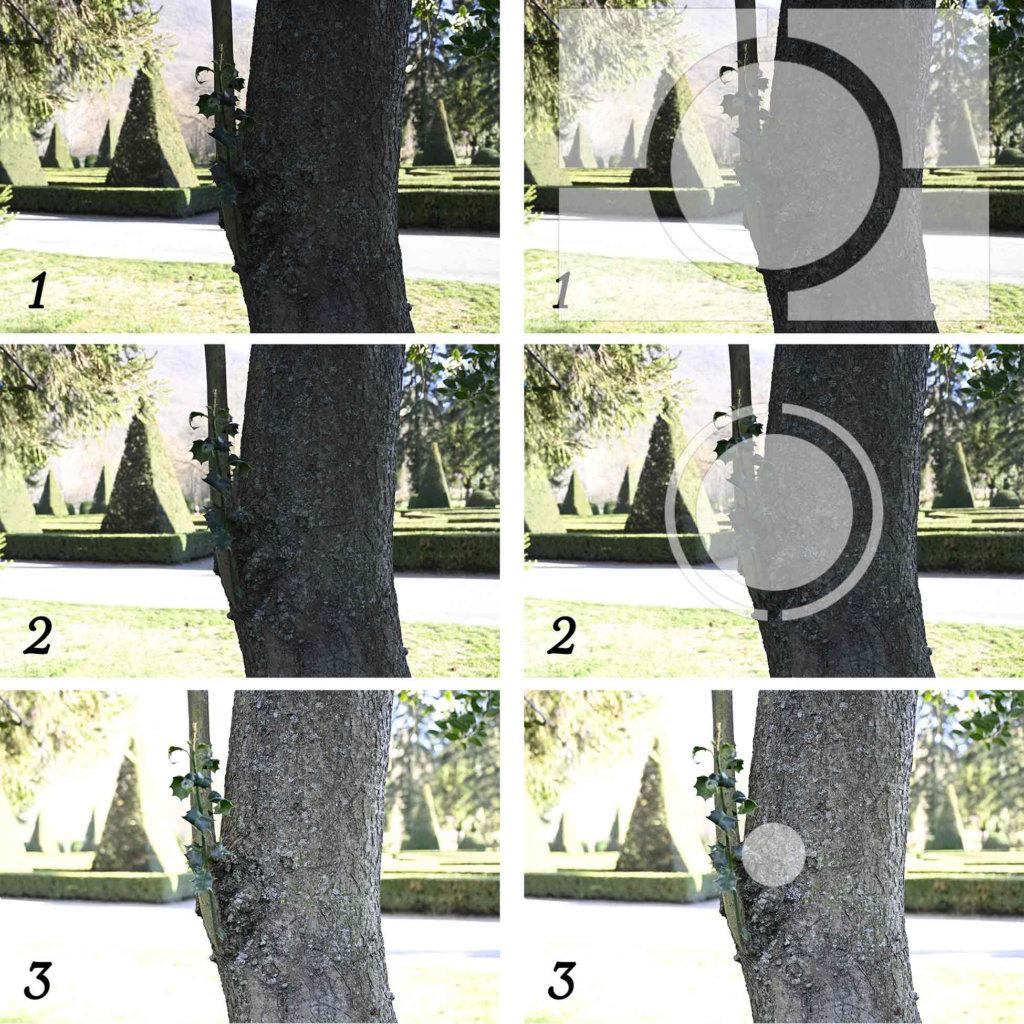 Modes de mesure de la luminosité en photographie